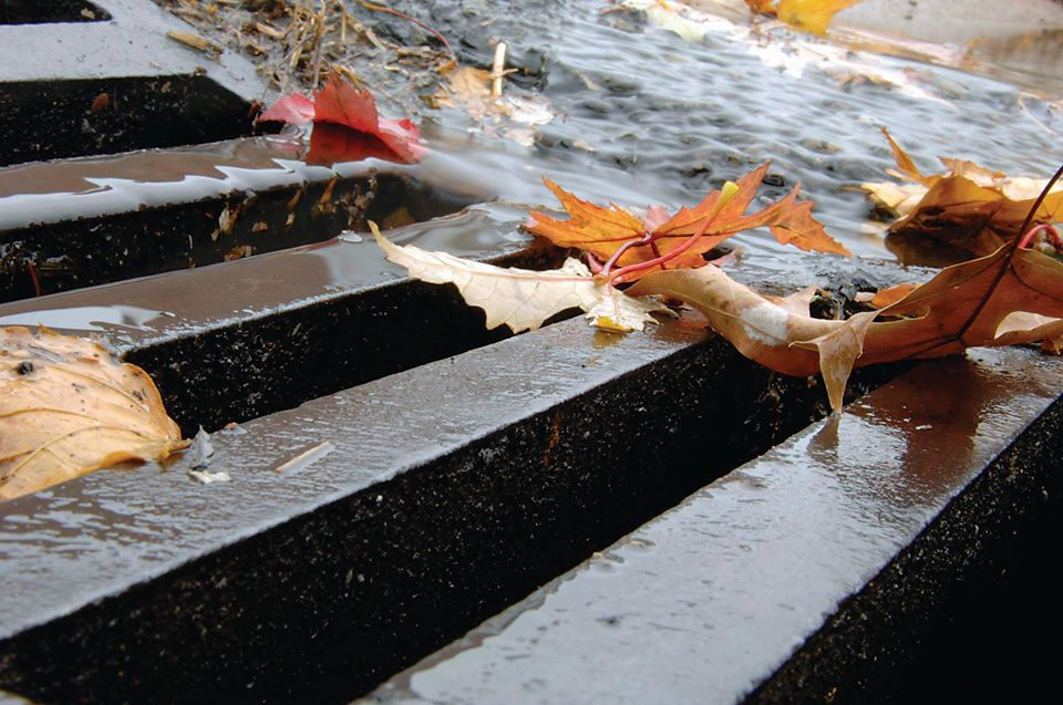 Fall Sewage Rates
